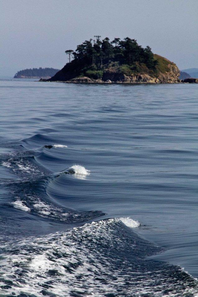 Island Wave